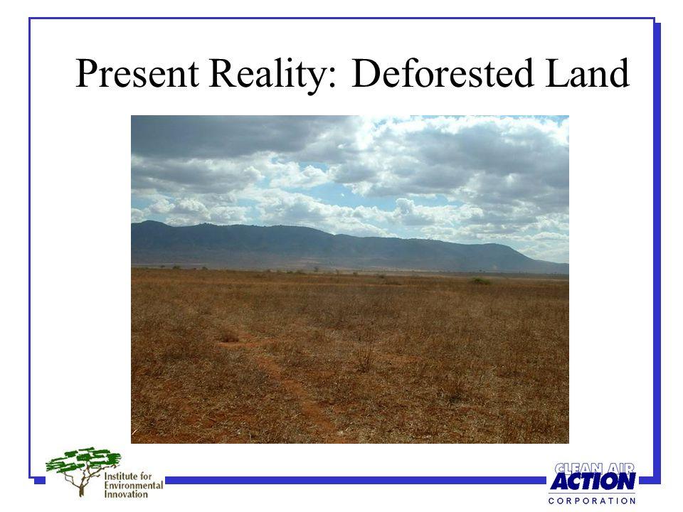 Degraded Soil