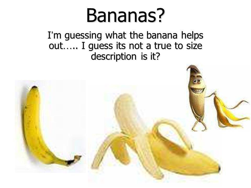 Bananas Im guessing what the banana helps out….. I guess its not a true to size description is it