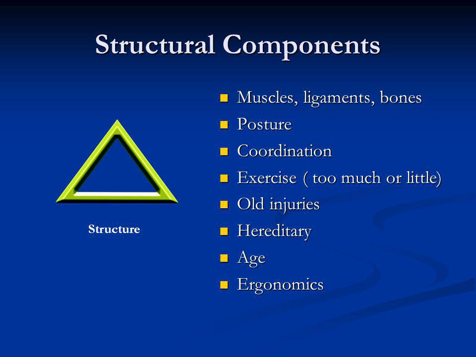 Three Components of Wholistic Care Structure Bio-chemicalMind/spiritual