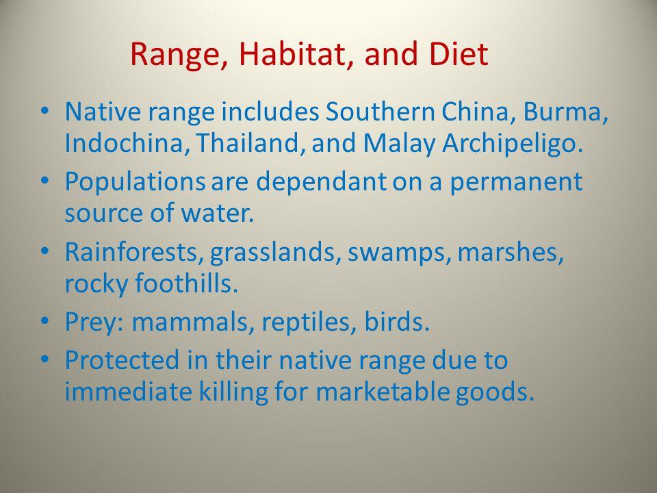Native range includes Southern China, Burma, Indochina, Thailand, and Malay Archipeligo.