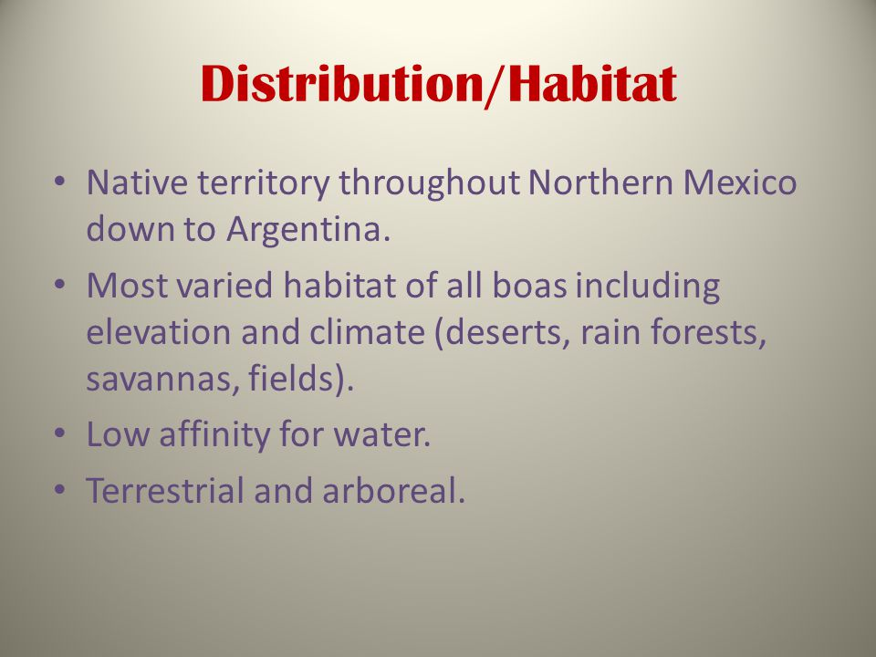 Distribution/Habitat Native territory throughout Northern Mexico down to Argentina.
