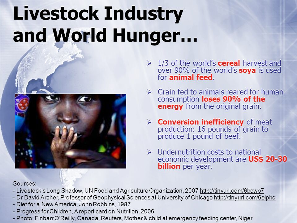 Livestock Industry and World Hunger… 1/3 of the worlds cereal harvest and over 90% of the worlds soya is used for animal feed.
