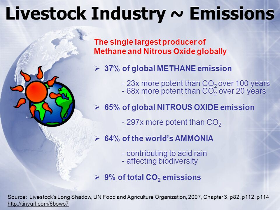 Livestock Industry ~ Emissions The single largest producer of Methane and Nitrous Oxide globally 37% of global METHANE emission - 23x more potent than CO 2 over 100 years - 68x more potent than CO 2 over 20 years 65% of global NITROUS OXIDE emission - 297x more potent than CO 2 64% of the worlds AMMONIA - contributing to acid rain - affecting biodiversity 9% of total CO 2 emissions The single largest producer of Methane and Nitrous Oxide globally 37% of global METHANE emission - 23x more potent than CO 2 over 100 years - 68x more potent than CO 2 over 20 years 65% of global NITROUS OXIDE emission - 297x more potent than CO 2 64% of the worlds AMMONIA - contributing to acid rain - affecting biodiversity 9% of total CO 2 emissions Source: Livestocks Long Shadow, UN Food and Agriculture Organization, 2007, Chapter 3, p82, p112, p114 http://tinyurl.com/6bowo7 http://tinyurl.com/6bowo7