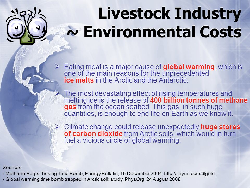 Livestock Industry ~ Environmental Costs Eating meat is a major cause of global warming, which is one of the main reasons for the unprecedented ice me