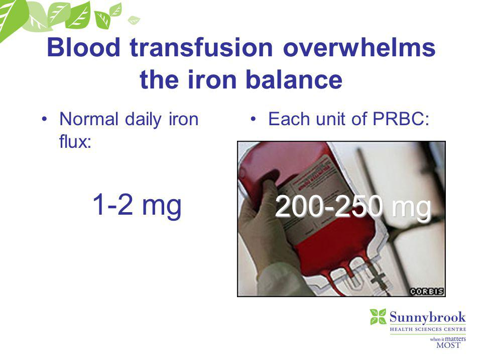 Blood transfusion overwhelms the iron balance Normal daily iron flux: 1-2 mg Each unit of PRBC: 200-250 mg