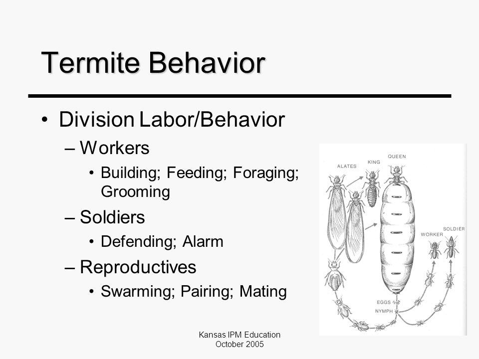 Kansas IPM Education October 2005 Termite Behavior Division Labor/Behavior –Workers Building; Feeding; Foraging; Grooming –Soldiers Defending; Alarm –Reproductives Swarming; Pairing; Mating