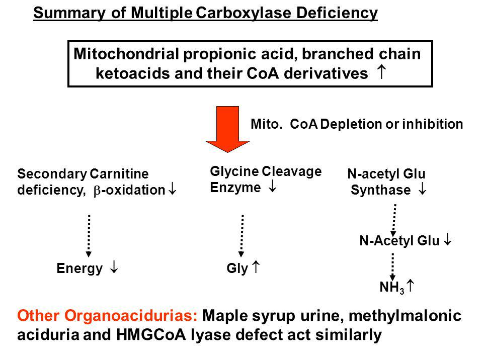 Summary of Multiple Carboxylase Deficiency Mitochondrial propionic acid, branched chain ketoacids and their CoA derivatives Secondary Carnitine deficiency, -oxidation Energy Glycine Cleavage Enzyme N-acetyl Glu Synthase Gly N-Acetyl Glu Mito.