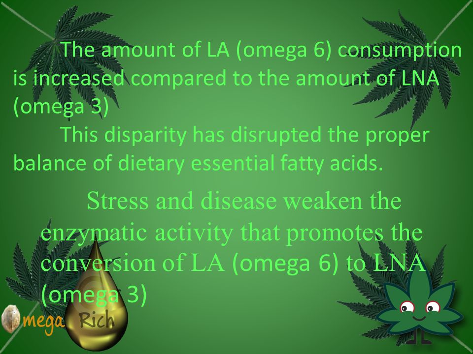 The amount of LA (omega 6) consumption is increased compared to the amount of LNA (omega 3) This disparity has disrupted the proper balance of dietary