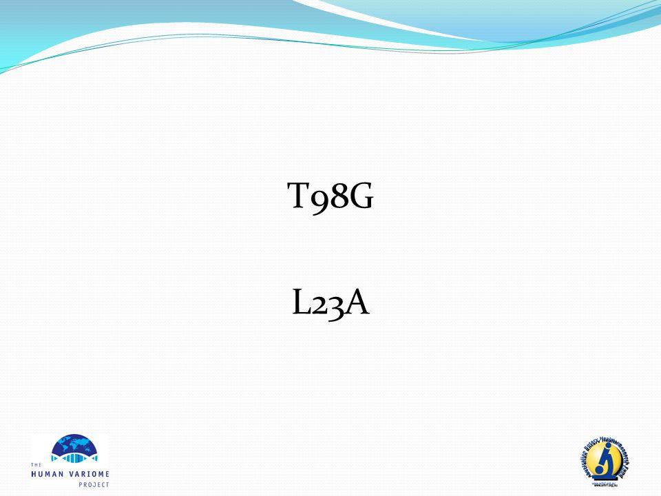 T98G L23A