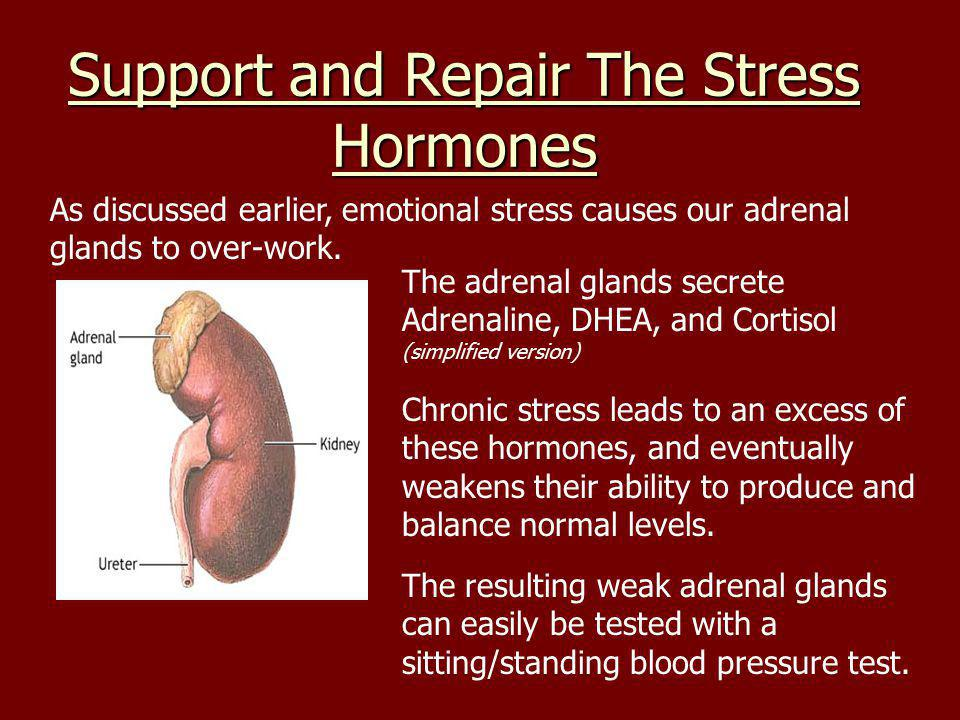 Support and Repair The Stress Hormones As discussed earlier, emotional stress causes our adrenal glands to over-work.