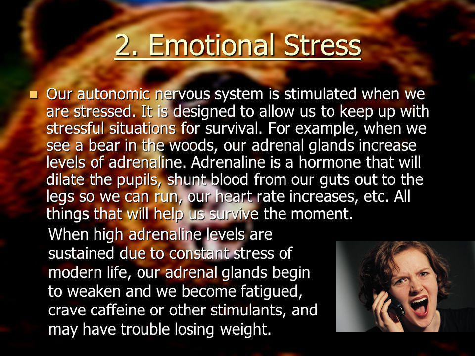 Some Long-Term Effects… High blood pressure, depression, skin problems, allergies, headaches, back pain, neck pain, insomnia, digestive disorders, fatigue, heart disease, obesity and stroke have all been related to extended periods of stress.