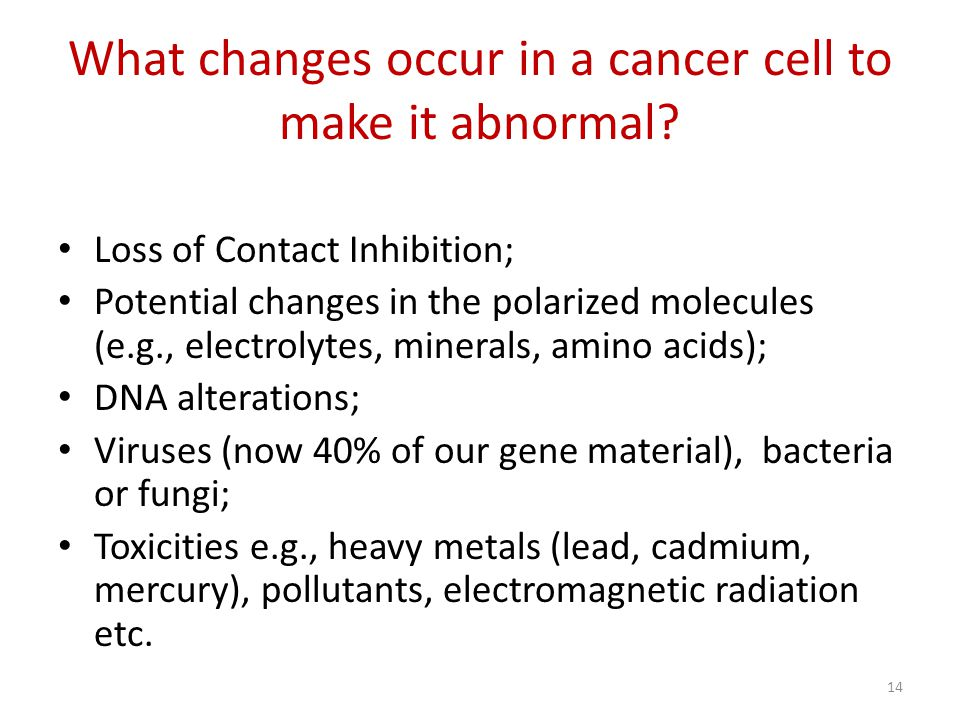 What changes occur in a cancer cell to make it abnormal.