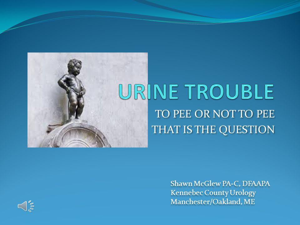 TO PEE OR NOT TO PEE THAT IS THE QUESTION TO PEE OR NOT TO PEE THAT IS THE QUESTION Shawn McGlew PA-C, DFAAPA Kennebec County Urology Manchester/Oakland, ME Shawn McGlew PA-C, DFAAPA Kennebec County Urology Manchester/Oakland, ME