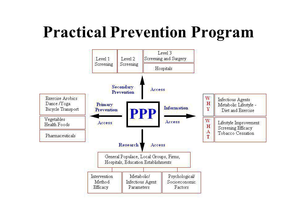 Practical Prevention Program