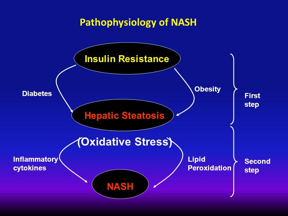 Pathophysiology of NASH Insulin Resistance Hepatic Steatosis (Oxidative Stress) NASH Diabetes Inflammatory cytokines Obesity Lipid Peroxidation First