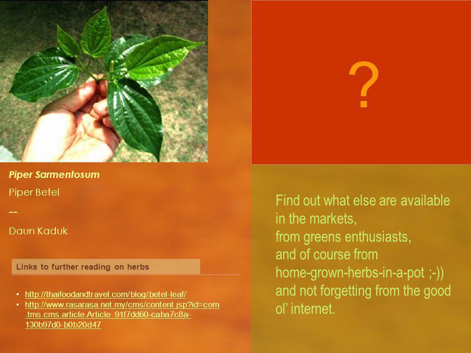 Piper Sarmentosum Piper Betel -- Daun Kaduk Links to further reading on herbs http://thaifoodandtravel.com/blog/betel-leaf/ http://www.rasarasa.net.my/cms/content.jsp id=com.tms.cms.article.Article_91f7dd60-caba7c8a- 130b97d0-b0b20d47http://www.rasarasa.net.my/cms/content.jsp id=com.tms.cms.article.Article_91f7dd60-caba7c8a- 130b97d0-b0b20d47 .