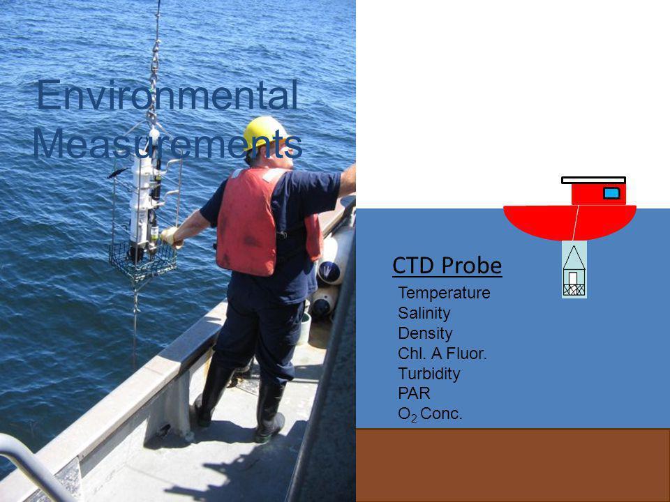20 CTD Probe Temperature Salinity Density Chl.A Fluor.