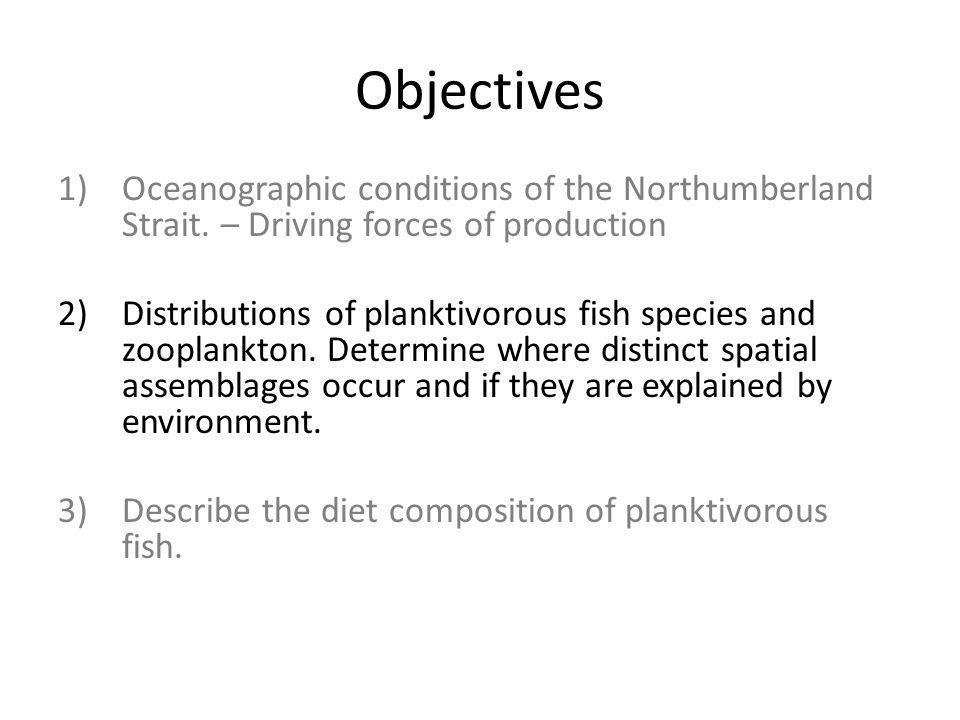 Objectives 1)Oceanographic conditions of the Northumberland Strait. – Driving forces of production 2)Distributions of planktivorous fish species and z