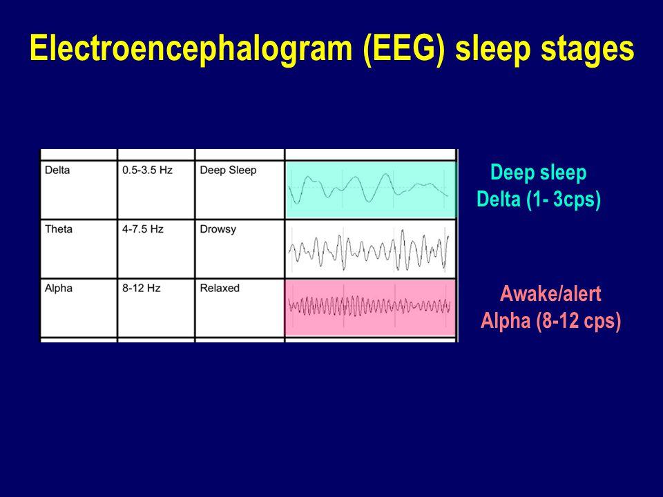 Electroencephalogram (EEG) sleep stages Deep sleep Delta (1- 3cps) Awake/alert Alpha (8-12 cps)