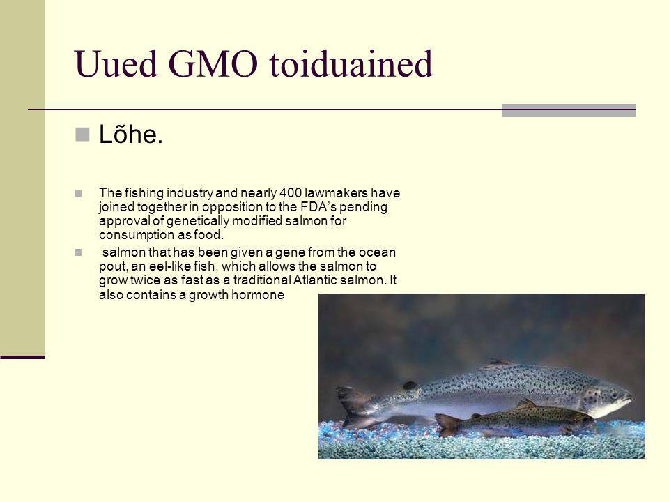 Uued GMO toiduained Lõhe.