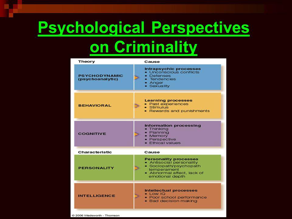 Psychological Perspectives on Criminality