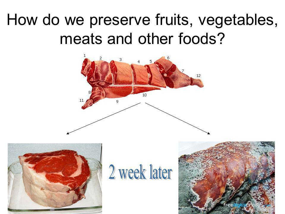 How do we preserve fruits, vegetables, meats and other foods?
