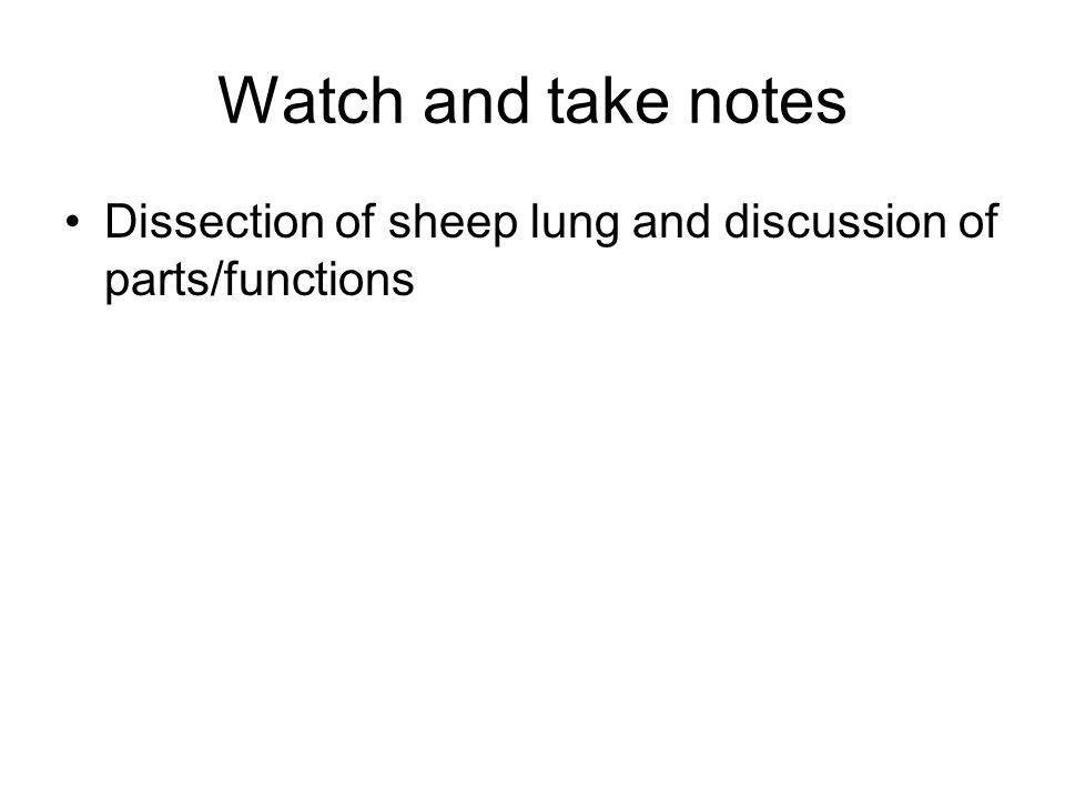 Watch and take notes Dissection of sheep lung and discussion of parts/functions