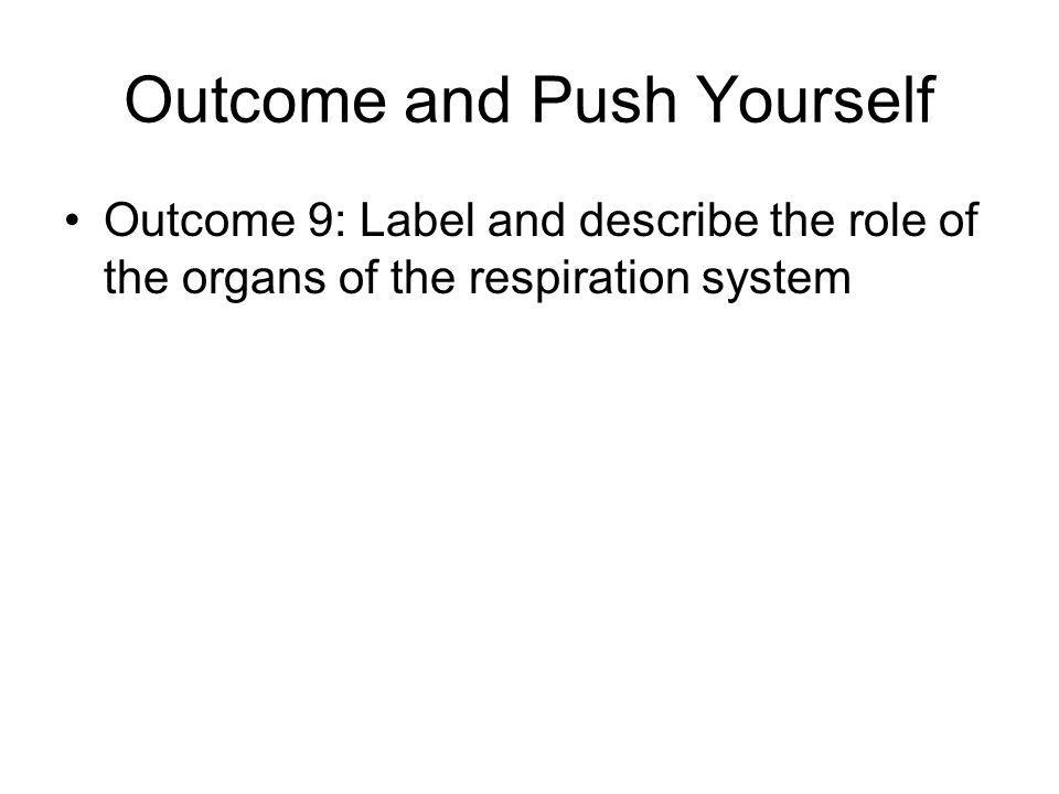 Outcome and Push Yourself Outcome 9: Label and describe the role of the organs of the respiration system