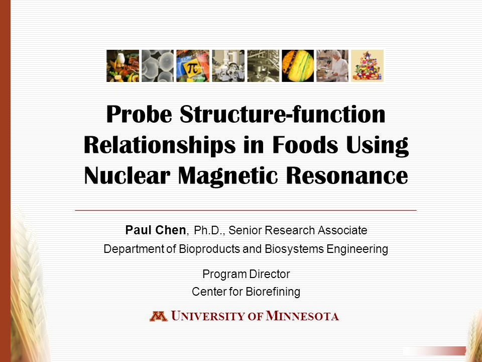 Outline Introduction Probe structure-function relationships in foods using NMR techniques Future research and teaching in cereal science and technology