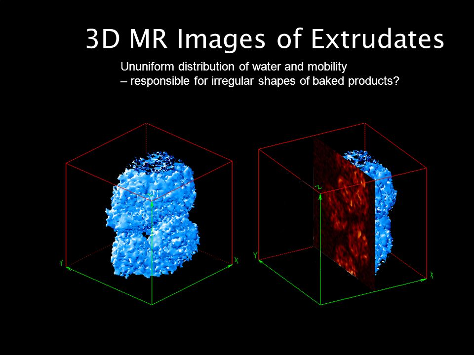 3D MR Images of Extrudates Ununiform distribution of water and mobility – responsible for irregular shapes of baked products?