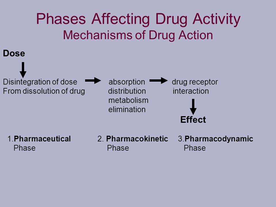 Phases Affecting Drug Activity Mechanisms of Drug Action Dose Disintegration of dose absorption drug receptor From dissolution of drug distribution in