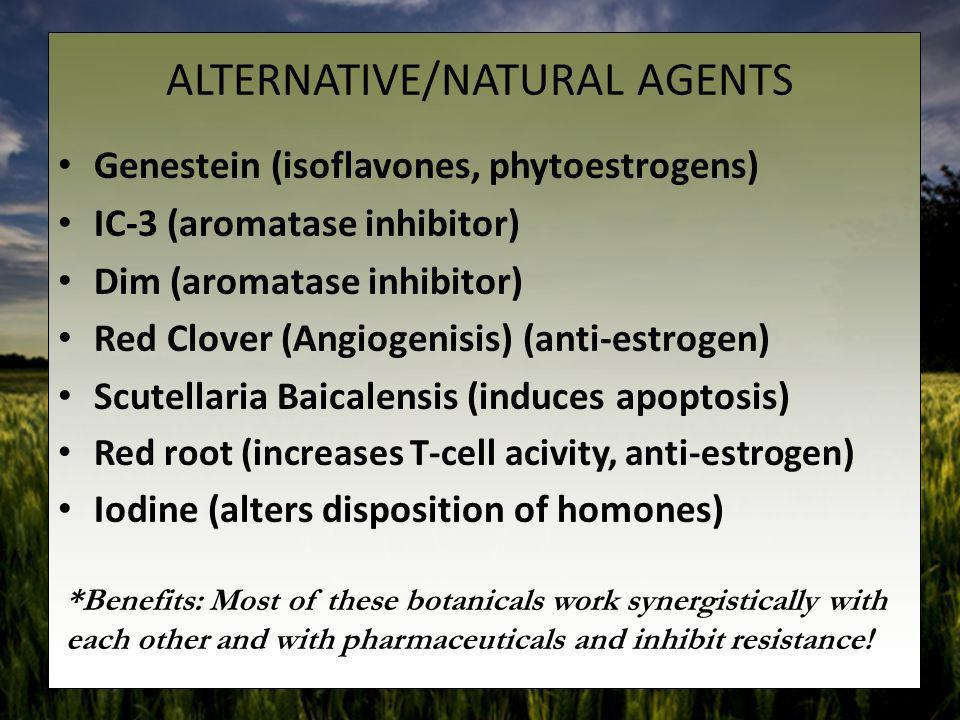 ALTERNATIVE/NATURAL AGENTS Genestein (isoflavones, phytoestrogens) IC-3 (aromatase inhibitor) Dim (aromatase inhibitor) Red Clover (Angiogenisis) (ant