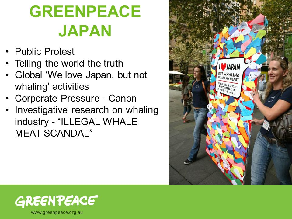 Public Protest Telling the world the truth Global We love Japan, but not whaling activities Corporate Pressure - Canon Investigative research on whaling industry - ILLEGAL WHALE MEAT SCANDAL GREENPEACE JAPAN