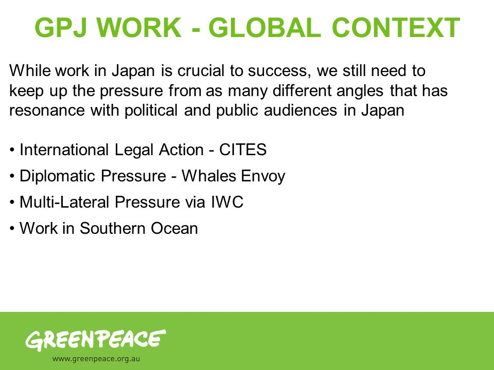 GPJ WORK - GLOBAL CONTEXT While work in Japan is crucial to success, we still need to keep up the pressure from as many different angles that has resonance with political and public audiences in Japan International Legal Action - CITES Diplomatic Pressure - Whales Envoy Multi-Lateral Pressure via IWC Work in Southern Ocean