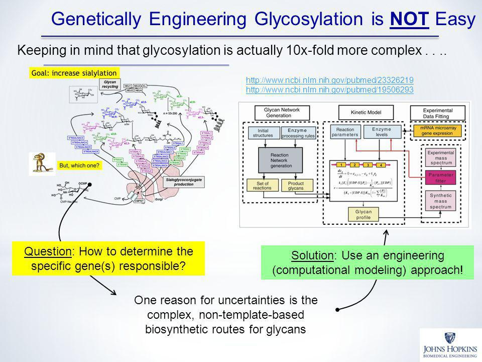 One reason for uncertainties is the complex, non-template-based biosynthetic routes for glycans Question: How to determine the specific gene(s) responsible.