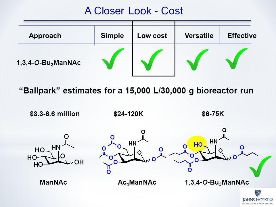 A Closer Look - Cost 1,3,4-O-Bu 3 ManNAc Ballpark estimates for a 15,000 L/30,000 g bioreactor run $24-120K Ac 4 ManNAc $3.3-6.6 million ManNAc1,3,4-O