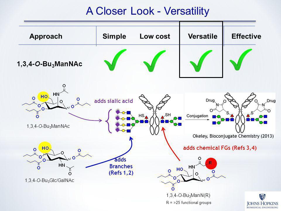 A Closer Look - Versatility 1,3,4-O-Bu 3 ManNAc 1,3,4-O-Bu 3 Glc/GalNAc adds sialic acid adds Branches (Refs 1,2) 1,3,4-O-Bu 3 ManN(R) R = >25 functio