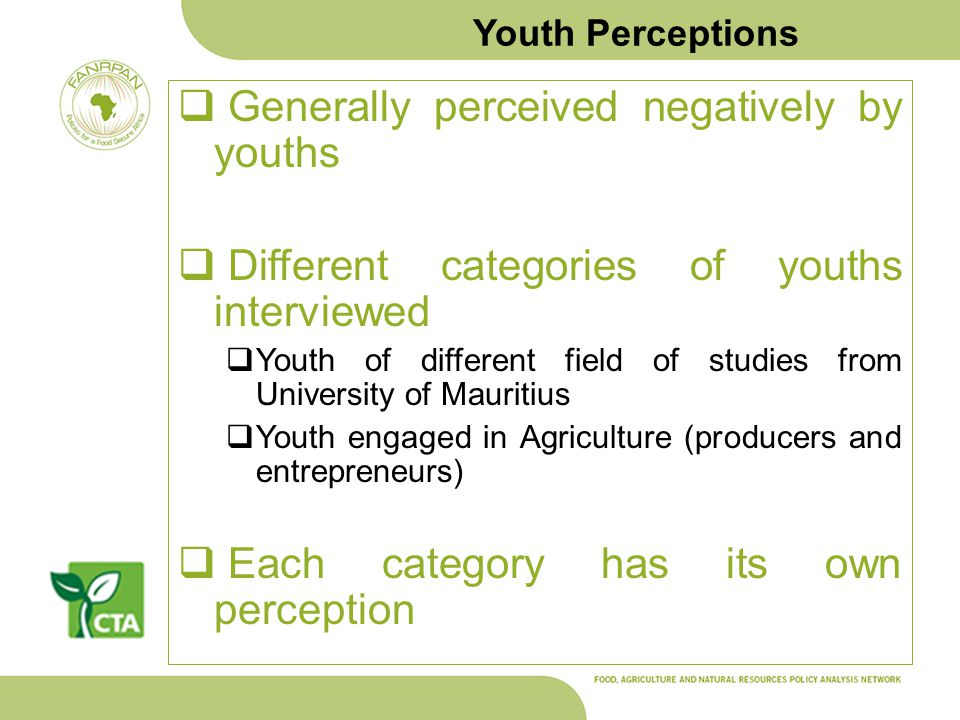 Youth Perceptions Generally perceived negatively by youths Different categories of youths interviewed Youth of different field of studies from Univers