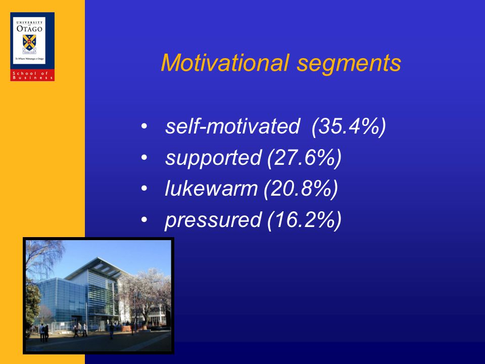 Motivational segments self-motivated (35.4%) supported (27.6%) lukewarm (20.8%) pressured (16.2%)