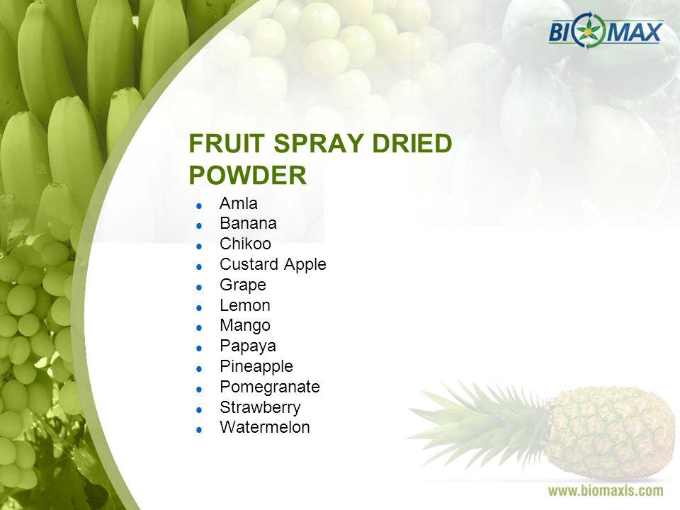 FRUIT SPRAY DRIED POWDER Amla Banana Chikoo Custard Apple Grape Lemon Mango Papaya Pineapple Pomegranate Strawberry Watermelon