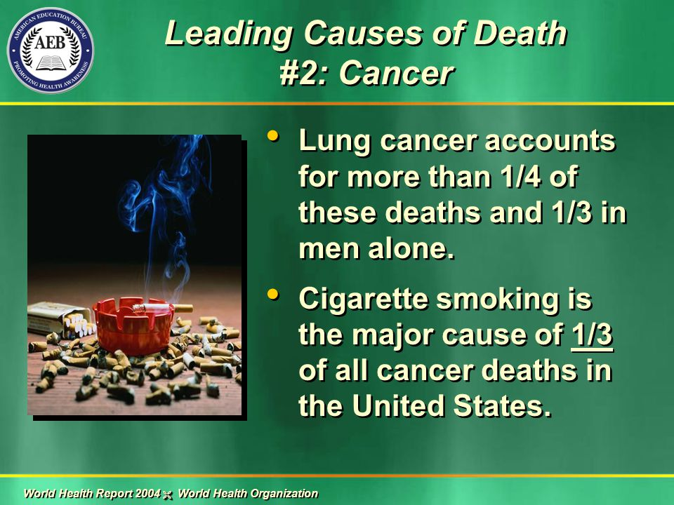 Lung cancer accounts for more than 1/4 of these deaths and 1/3 in men alone. Cigarette smoking is the major cause of 1/3 of all cancer deaths in the U