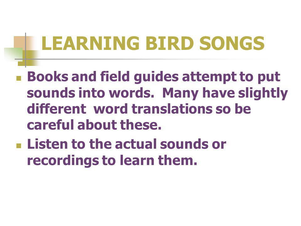 LEARNING BIRD SONGS Books and field guides attempt to put sounds into words.