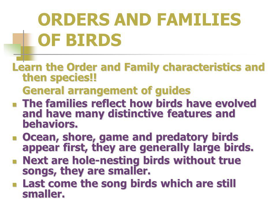ORDERS AND FAMILIES OF BIRDS Learn the Order and Family characteristics and then species!! General arrangement of guides The families reflect how bird