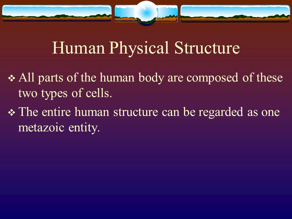 Human Beings Every cell has also its own individual mind and consciousness.