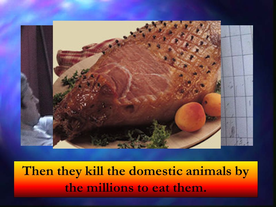 Then they kill the domestic animals by the millions to eat them.