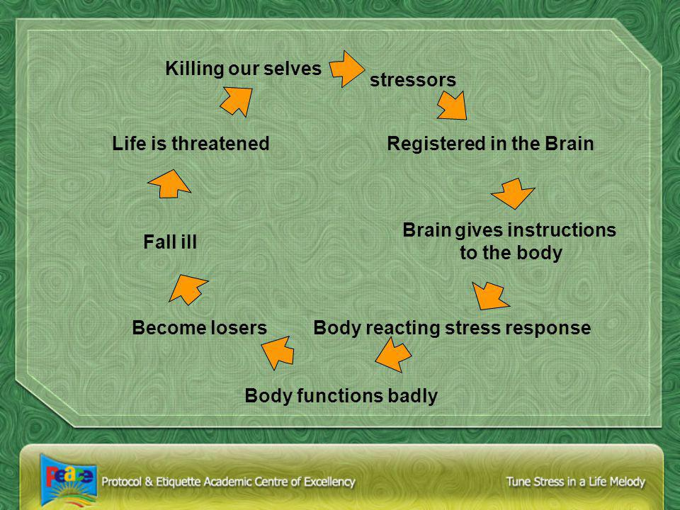 Stress Management Program Awareness of your stress levels How does stress affect you Which stressors affect you particularly How can you become more aware of your stress response What is the strength and duration of your stress response Which stress management techniques most suit you