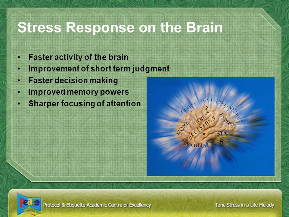 Stress Response on the Brain Faster activity of the brain Improvement of short term judgment Faster decision making Improved memory powers Sharper focusing of attention
