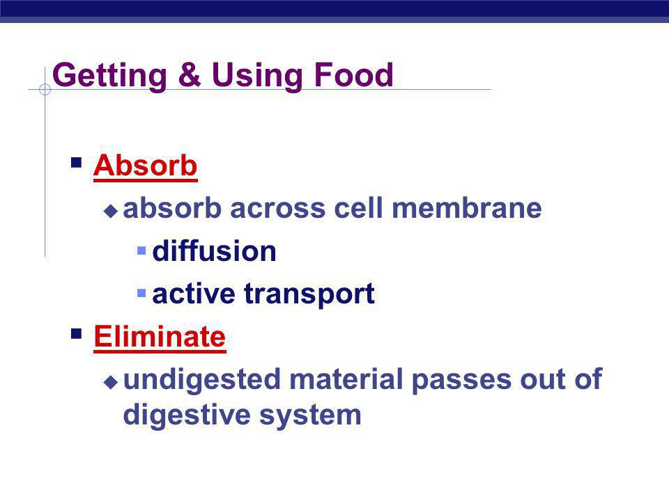 Getting & Using Food Ingestion taking in food Digestion mechanical digestion breaking up food into smaller pieces chemical digestion breaking down food into molecules small enough to be absorbed into cells enzymes
