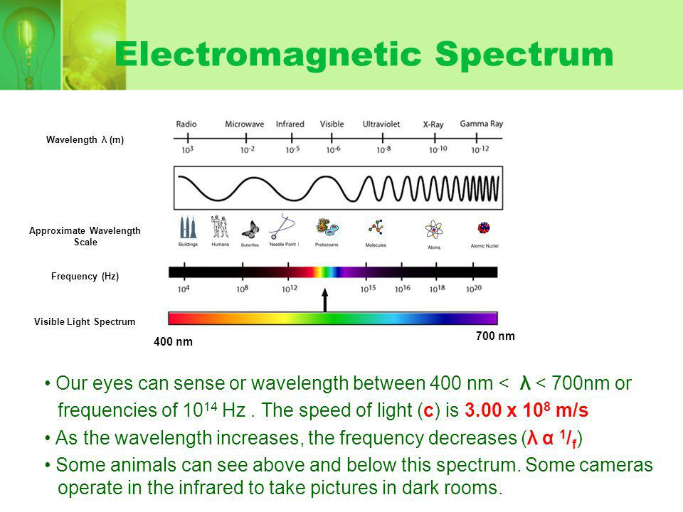Electromagnetic Spectrum Our eyes can sense or wavelength between 400 nm < λ < 700nm or frequencies of Hz.