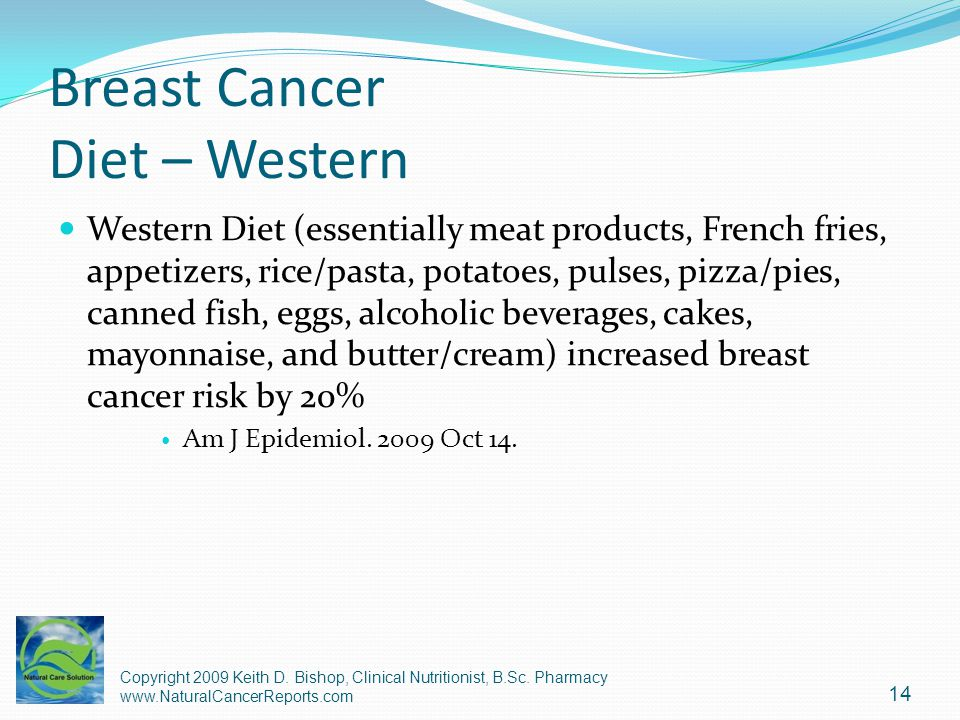 Breast Cancer Diet – Western Western Diet (essentially meat products, French fries, appetizers, rice/pasta, potatoes, pulses, pizza/pies, canned fish,